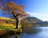 Autumn in the Lakes Day Trip 2018