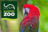 Blackpool Zoo Day Trip 2018