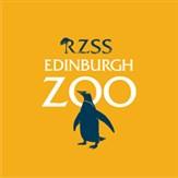 Edinburgh Zoo Day Trip 2019
