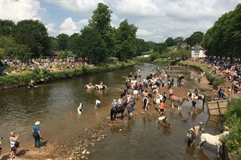 Appleby Horse Fair Day Trip 2021